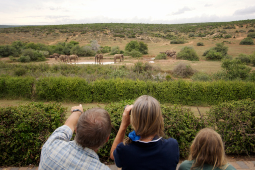 Family: Escape to the Cape — South Africa
