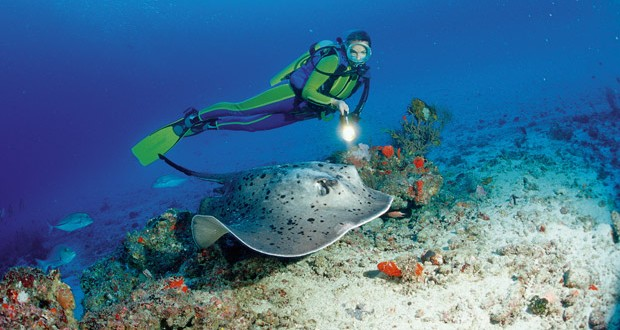 Maldives: Into the deep