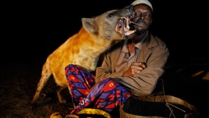 Hyena man feeding wild hyenas with meat on a stick, Ethiopia. Image: Getty