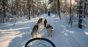 Family travel: Finnish Lapland
