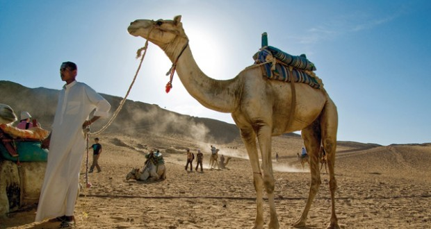 Win an adventurous escape to Egypt for two!