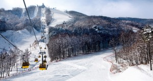 South Korea: Hitting the slopes