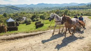 A pair of farmers on the road between the villages of Botiza and Slatioara, in the rural heart of Maramures. Image: Henry Wismayer