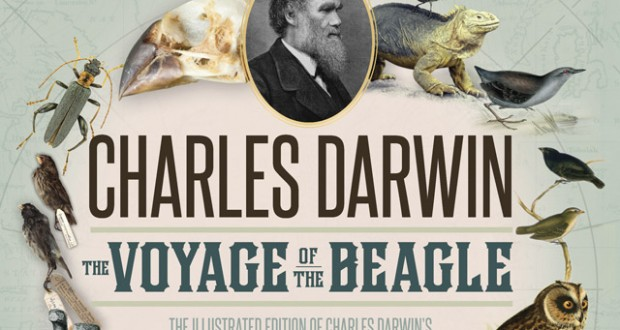 Bookshelf: The origin of the species