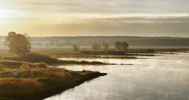 River Oder at sunrise, Brandenburg. Image: Getty