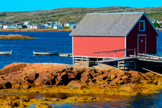 The harbour of Joe Batt's Arm, the village where Zita Cobb was born and raised