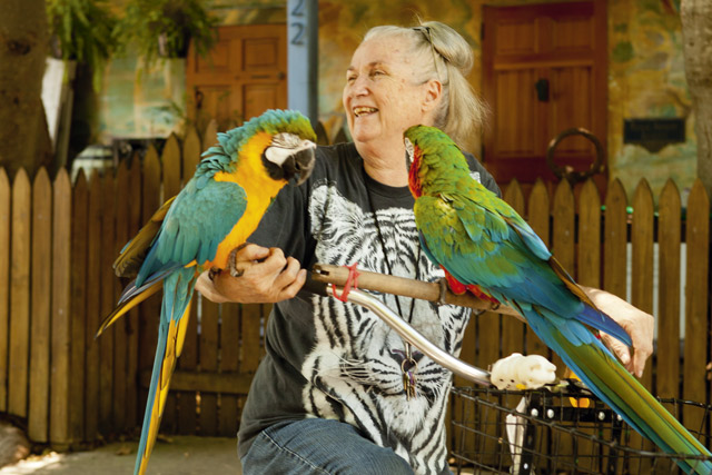 'Parrot Lady', Florida by Kris Davidson