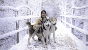 Jade and huskies, LaplandUK