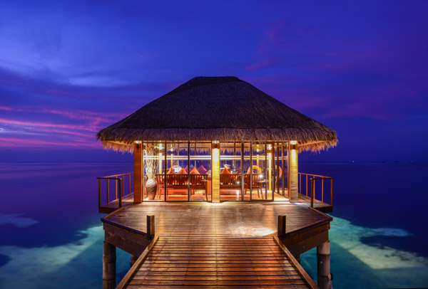 Experience The Maldives