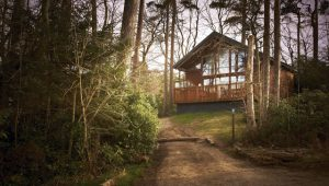 Forest Holidays, North Yorkshire, UK getaways