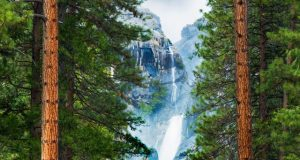 America's natural wonders: Yosemite Valley