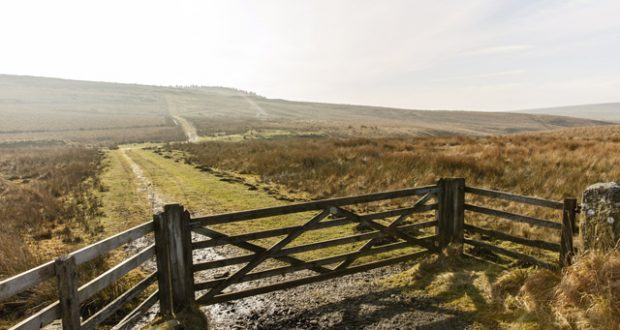 Northumberland National Park. Image: Annapurna Mellor
