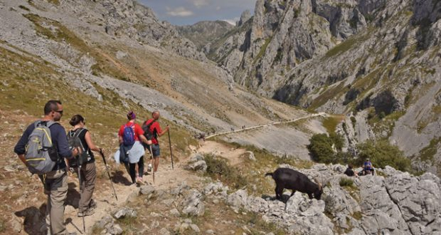 Hikers walking along the River Cares route between the towns of Poncebos and Cain in Picos De Europa National Park, Cantabrian Mountains. Image: Getty