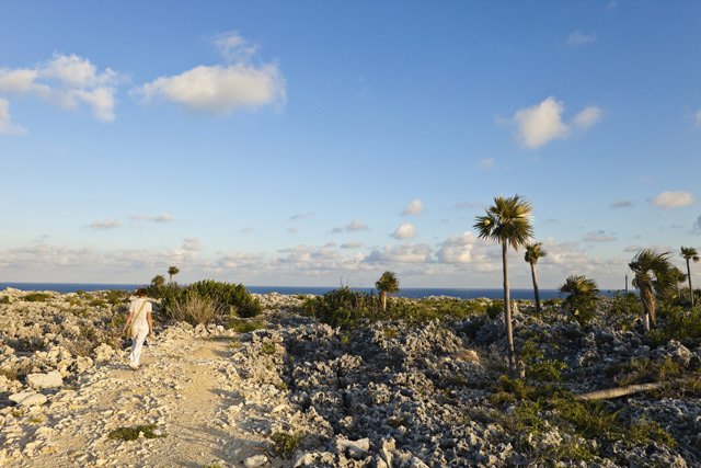 The Bluff, Cayman Brac. Image: Getty